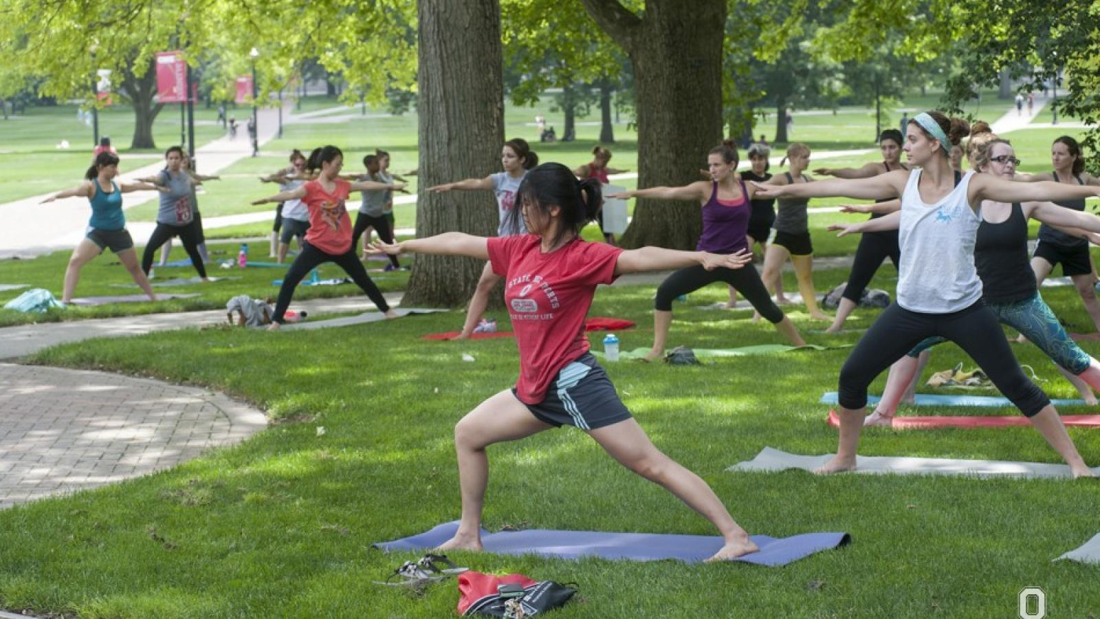 Group doing yoga on the oval