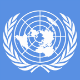 The United Nations System Image